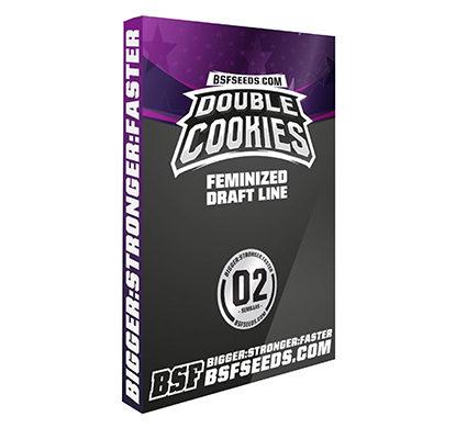 double-cookies-graines-de-cannabis-fem-thc