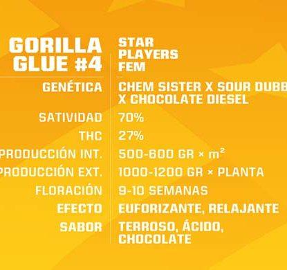 SensorySeeds Description Graines Gorilla Glue Féminisées