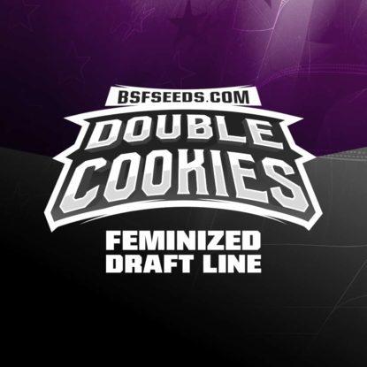 Graines de cannabis féminisée du Double Cookies