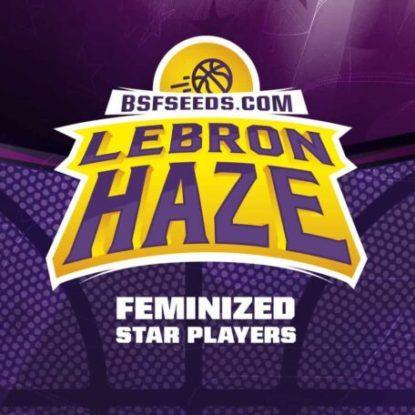 Label du graines de cannabis féminisée Lebron Haze
