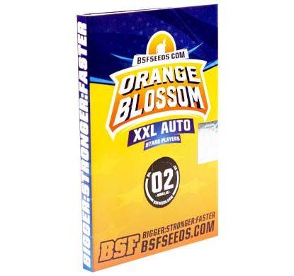 SensorySeeds Emballage Graines Orange Blossom Autofloraison