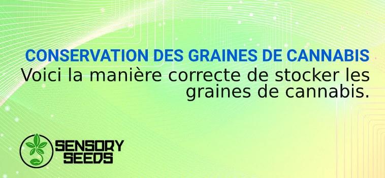 Conservation des graines de cannabis