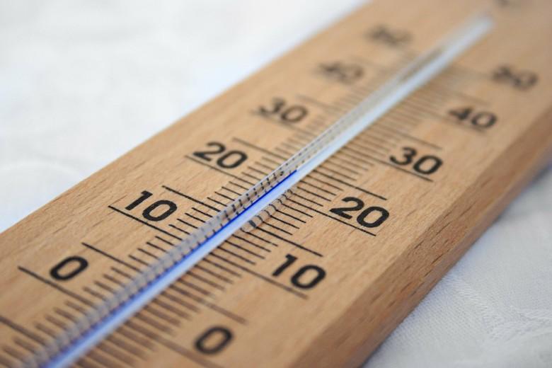 bonne température pour les graines autofloraison