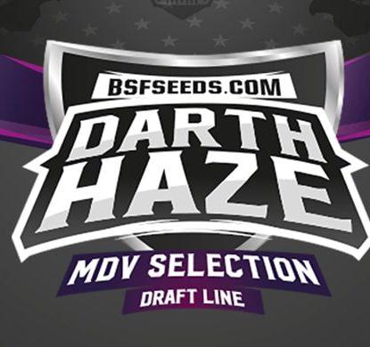 Logo Darth Haze