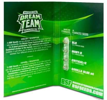 Emballage du kit Dream Team Feminized Mix du weed seed shop