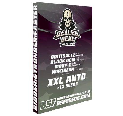 Kit Dealer Deal XXL Automix des meilleurs graines de cannabis