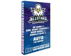 Kit du weed seed shop All Stars USA Automix graines de canabis