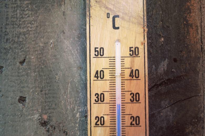 semences de chanvre changements de température