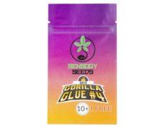 graines-de-cannabis-en-vrac-gorilla-glue-4