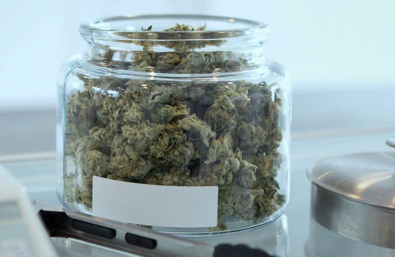 bocal de graines de cannabis