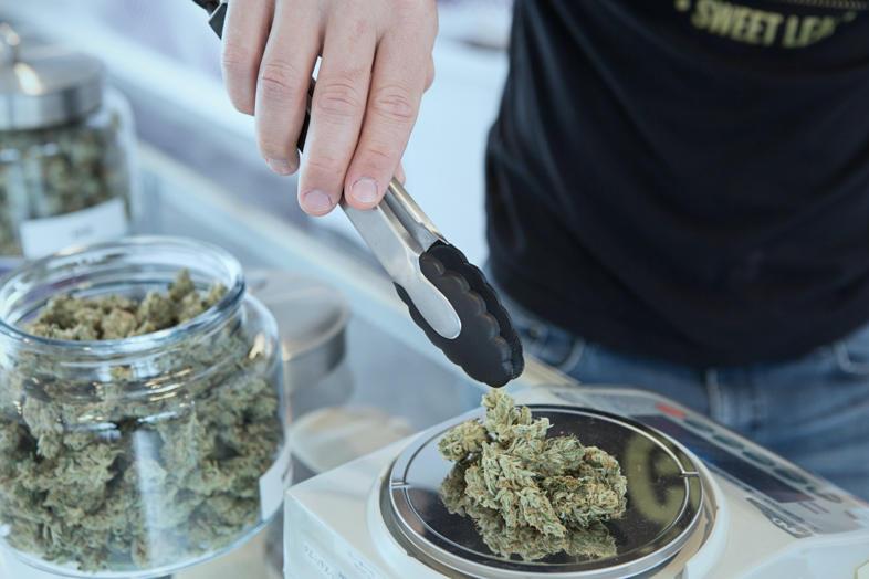 La plus chère collection de graines de cannabis