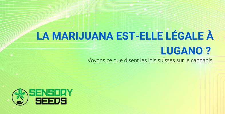 La marijuana à Lugano : est-elle légale ou non ?