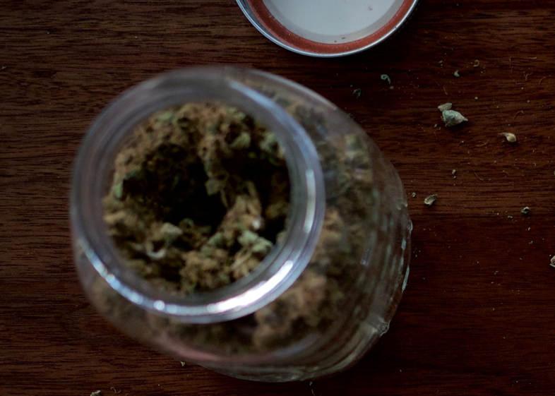 Semences de collection : les 3 variétés de graines de cannabis de collection les plus achetées en 2020