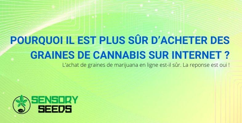 Pourquoi il est plus sûr d'acheter des graines de cannabis sur Internet ?