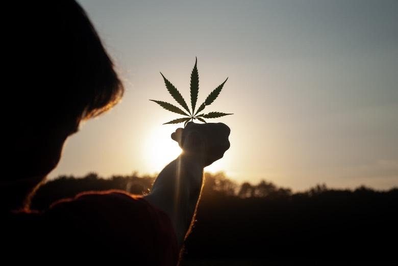 Avantages thérapeutiques du cannabis