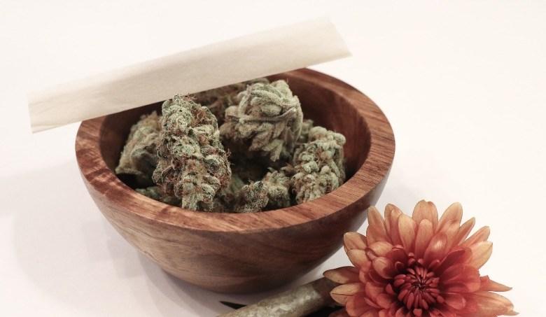 Cannabis Sinsemilla puissant et aromatique