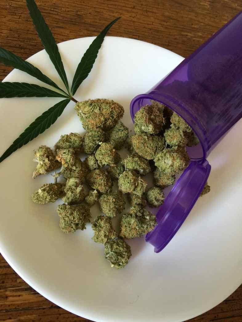 Fleurs produites à partir de graines de cannabis de type Skunk