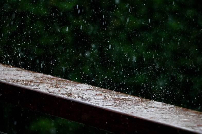 La pluie peut nuire aux cultures en plein air