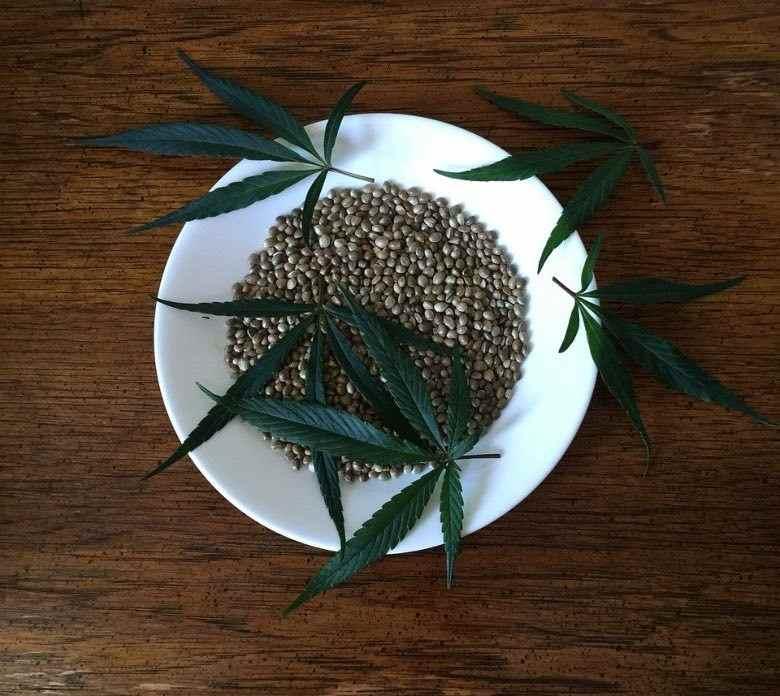 Acheter des graines de cannabis en ligne est plus sûr