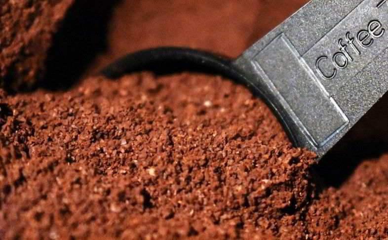 Le café est un excellent engrais pour les plantes