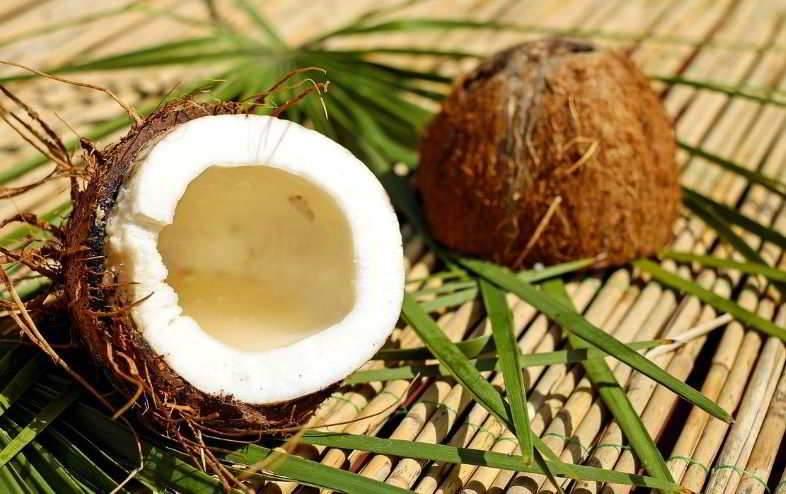 Fibre de coco : comment l'utiliser ?