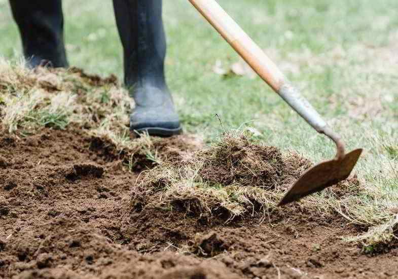 Méthode manuelle pour éviter les herbicides et les effets sur la santé
