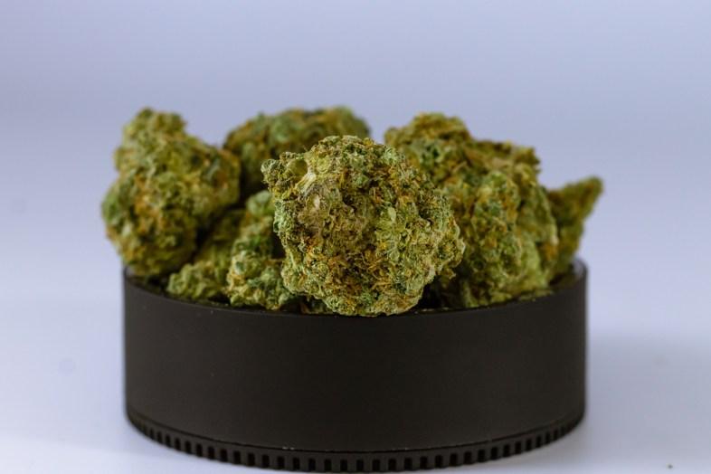 Un avenir radieux entrevu pour les commerçants dérivés du cannabis